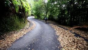 Penang Longest Trail