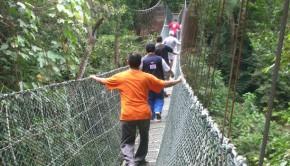 jerejak-rainforest-resort