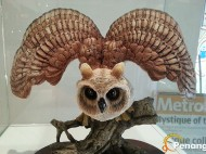 A captivating owl sculpture. Look at its sharp eye!